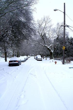Snow 081R