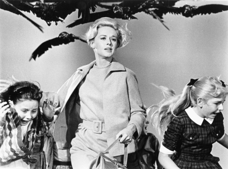 Tippi-Hedren-The-Birds-Alfred-Hitchcock